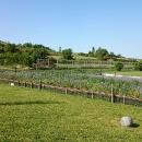Schneckenfarm